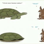 Tortoise versus the Hare