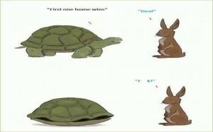 Tortoise versus the Hare